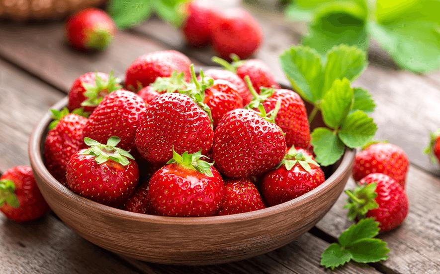 frische Erdbeeren vom Feld bei Hof Schneider in Datteln