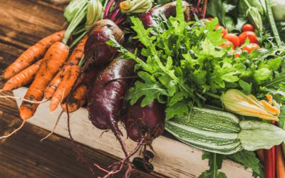 Warum kaufen wir unsere Produkte für den täglichen Bedarf gerne beim Bauern?